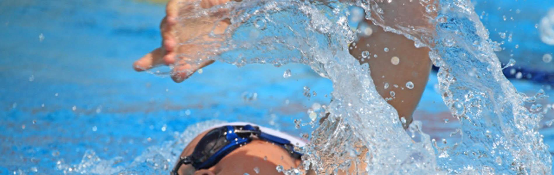 佐賀水泳連盟イメージ01